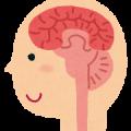 脳から脊椎